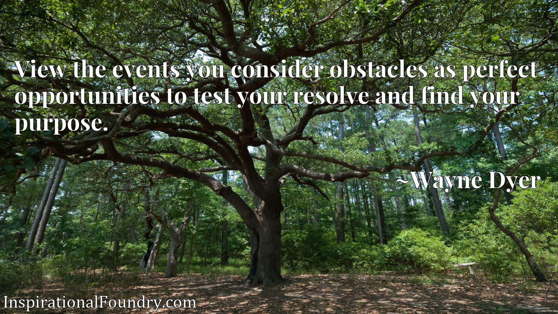 View the events you consider obstacles as perfect opportunities to test your resolve and find your purpose.