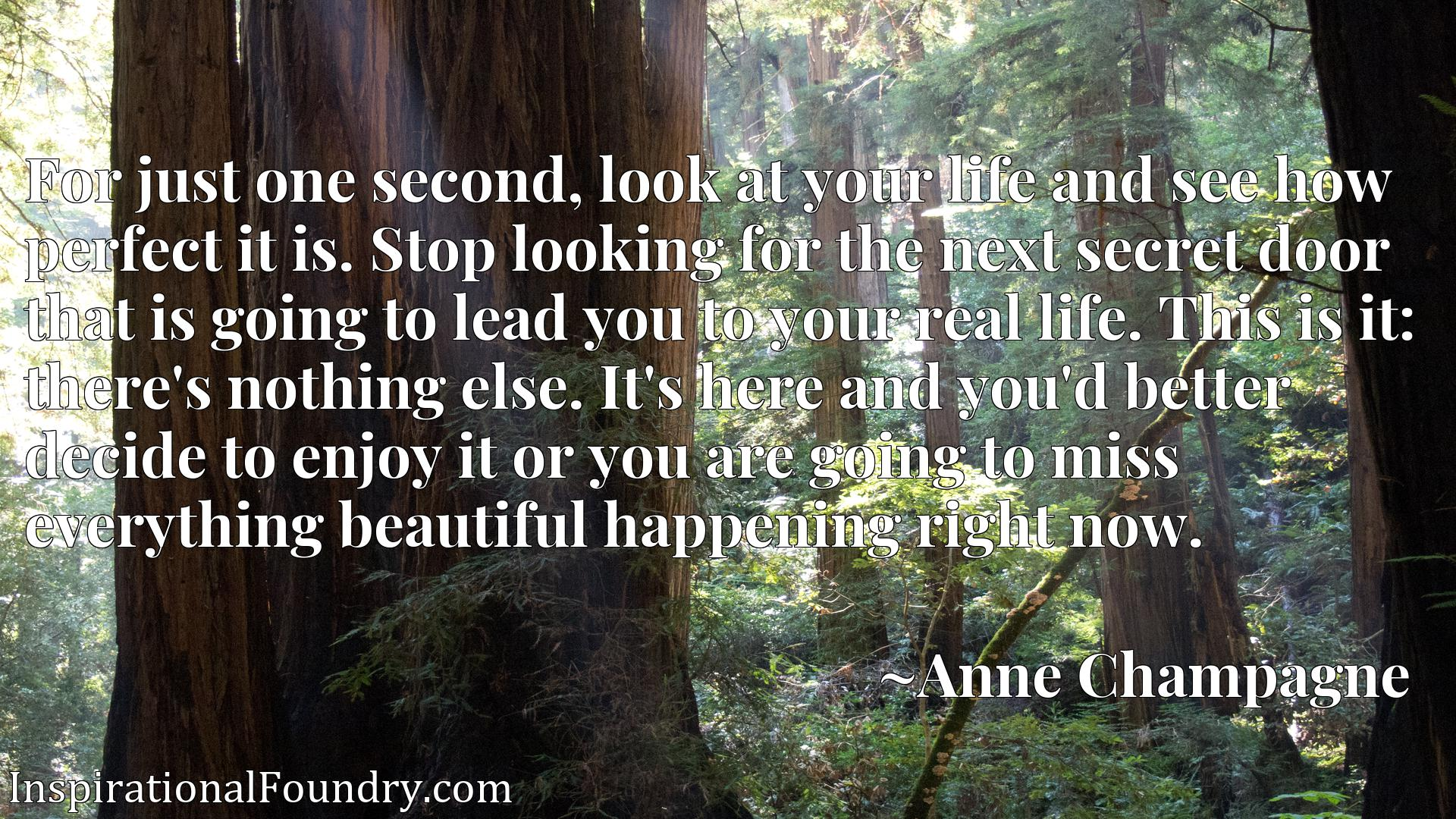 For just one second, look at your life and see how perfect it is. Stop looking for the next secret door that is going to lead you to your real life. This is it: there's nothing else. It's here and you'd better decide to enjoy it or you are going to miss everything beautiful happening right now.