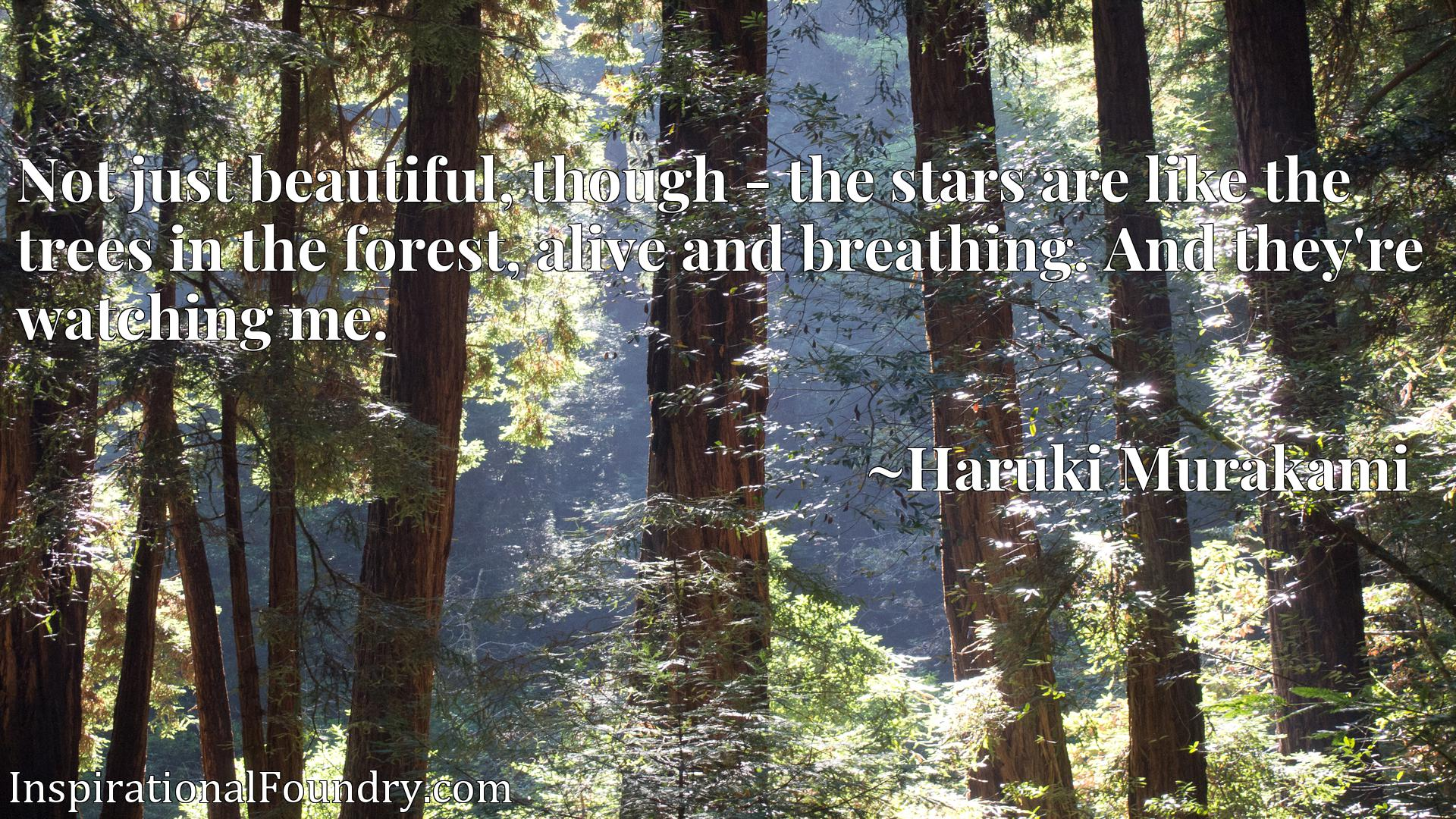 Not just beautiful, though - the stars are like the trees in the forest, alive and breathing. And they're watching me.