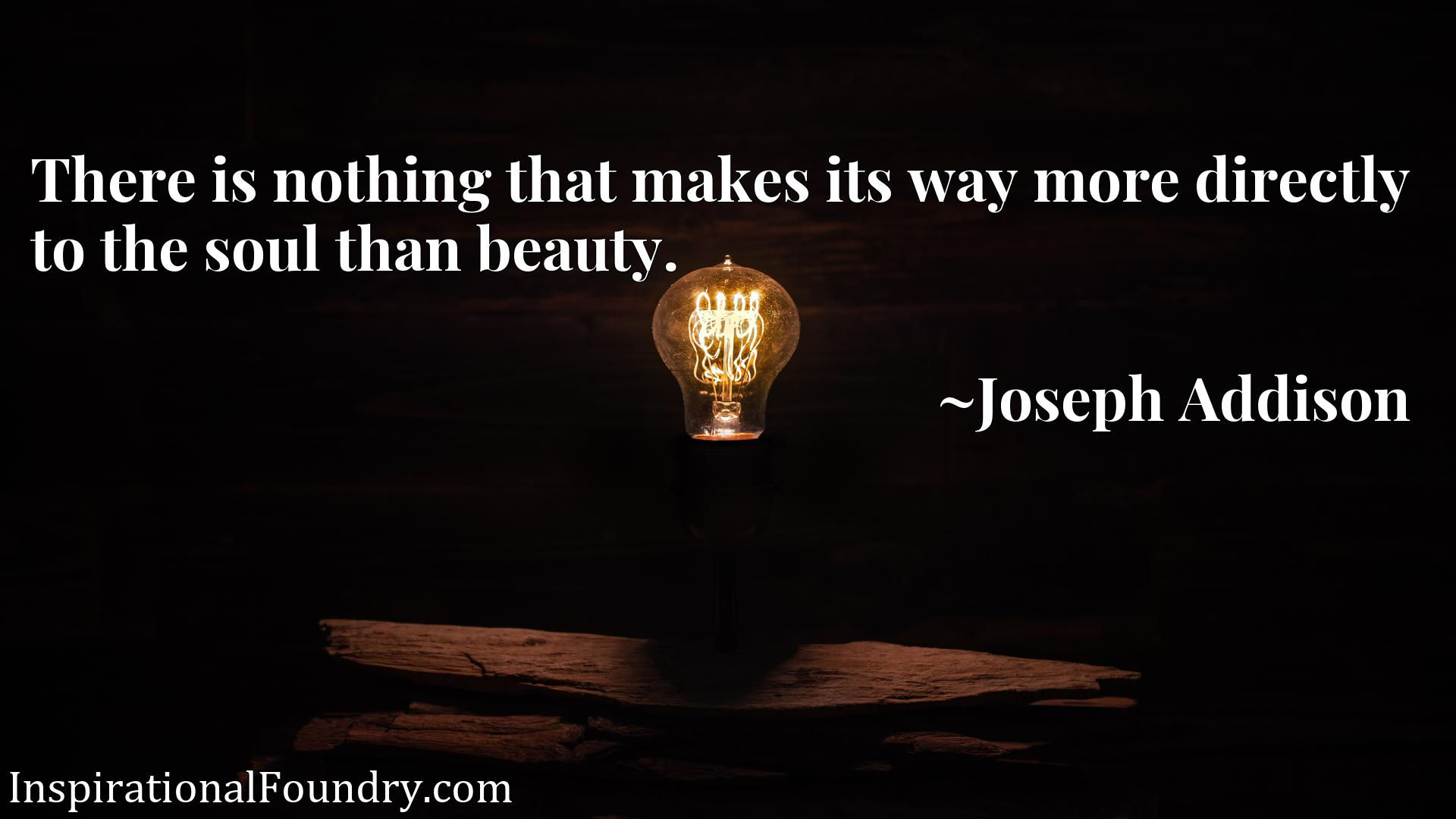 There is nothing that makes its way more directly to the soul than beauty.