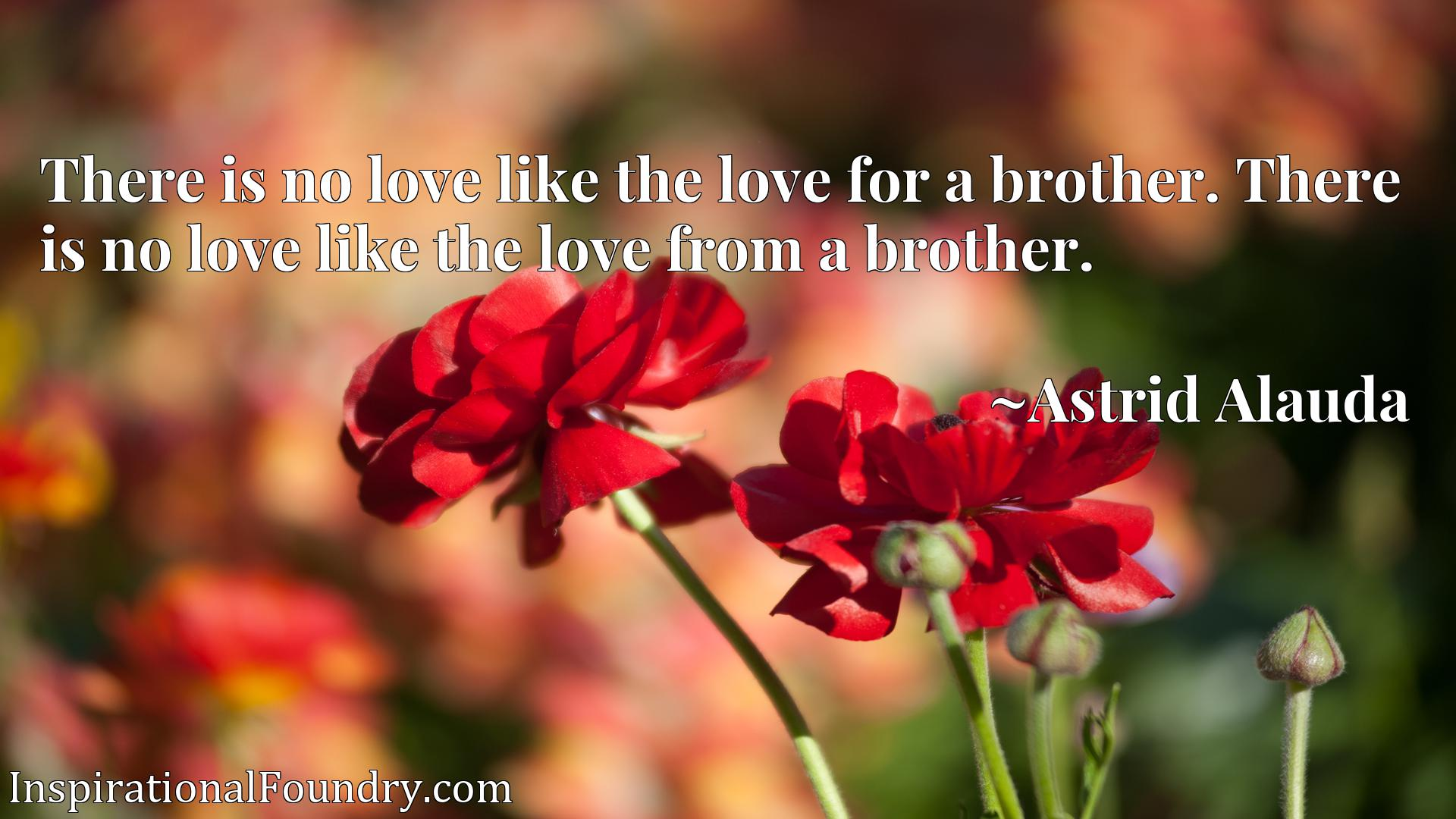 There is no love like the love for a brother. There is no love like the love from a brother.