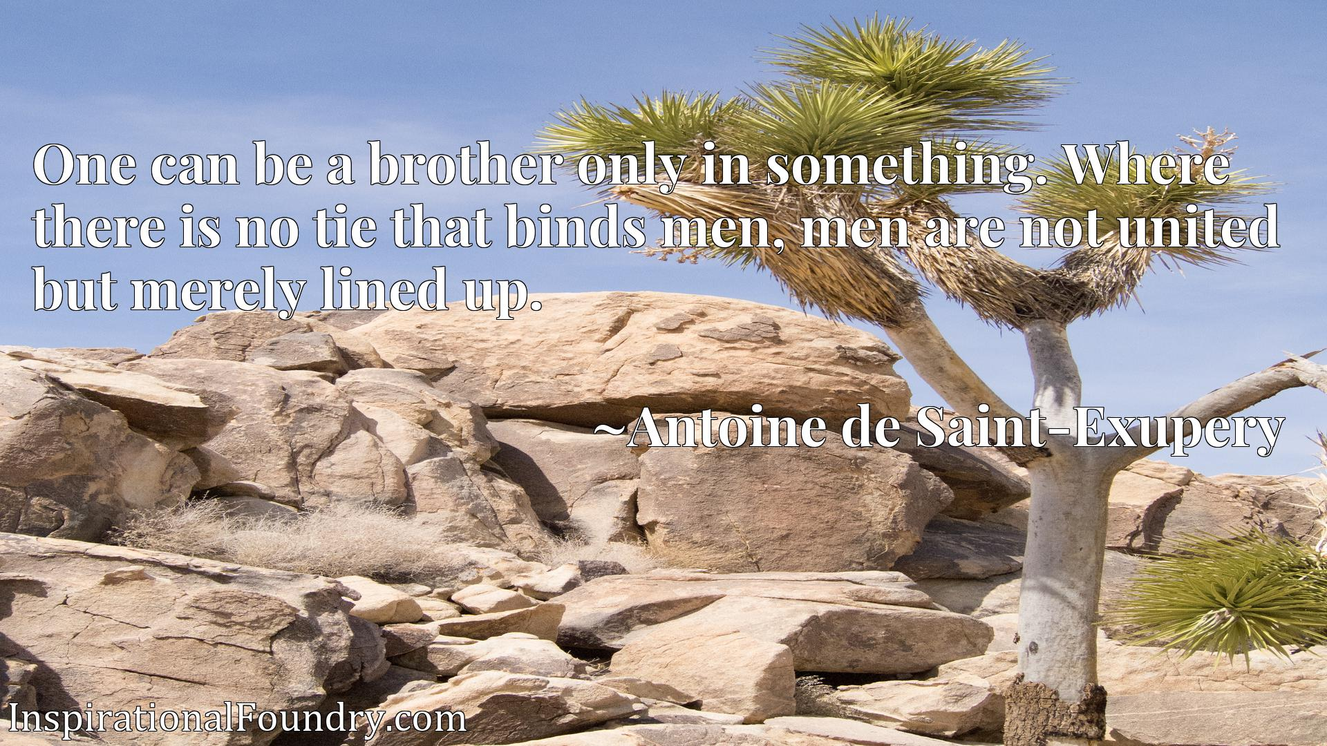 One can be a brother only in something. Where there is no tie that binds men, men are not united but merely lined up.