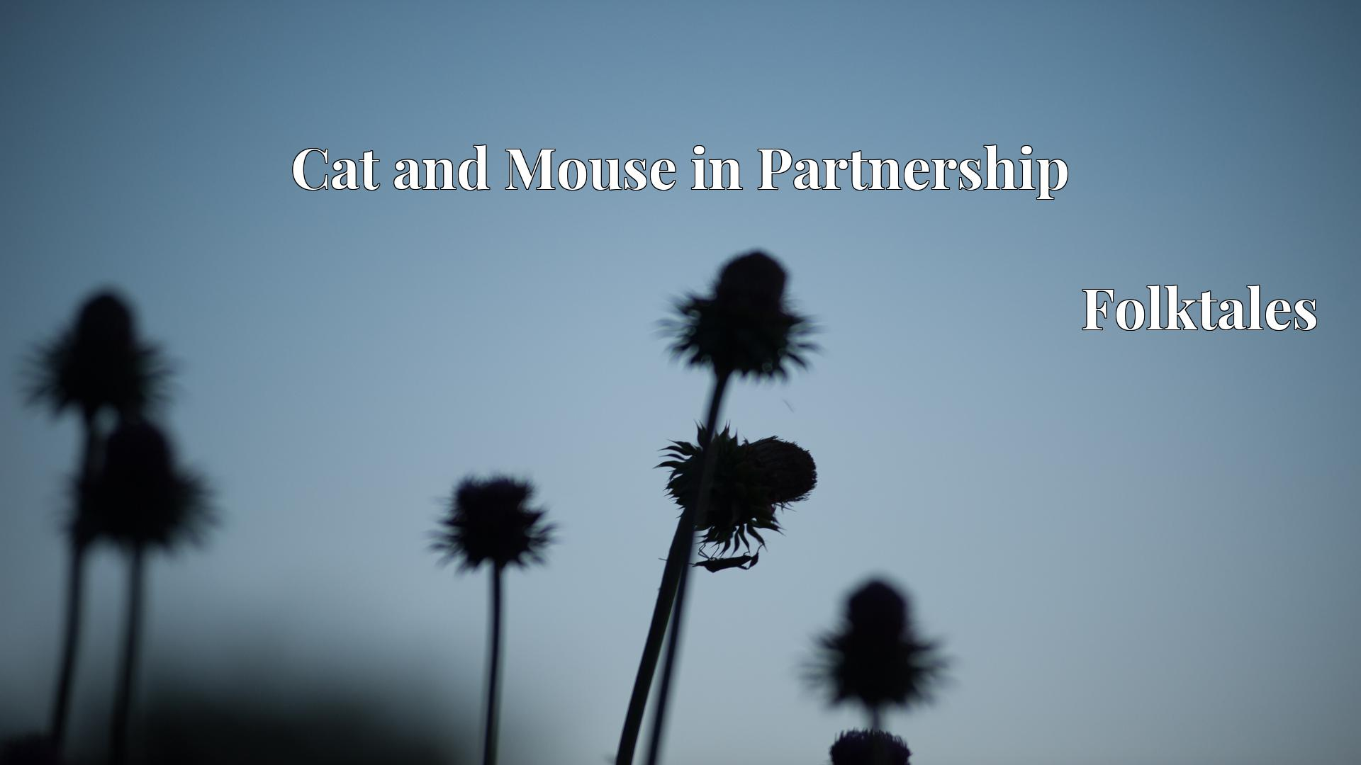 Cat and Mouse in Partnership - Folktales