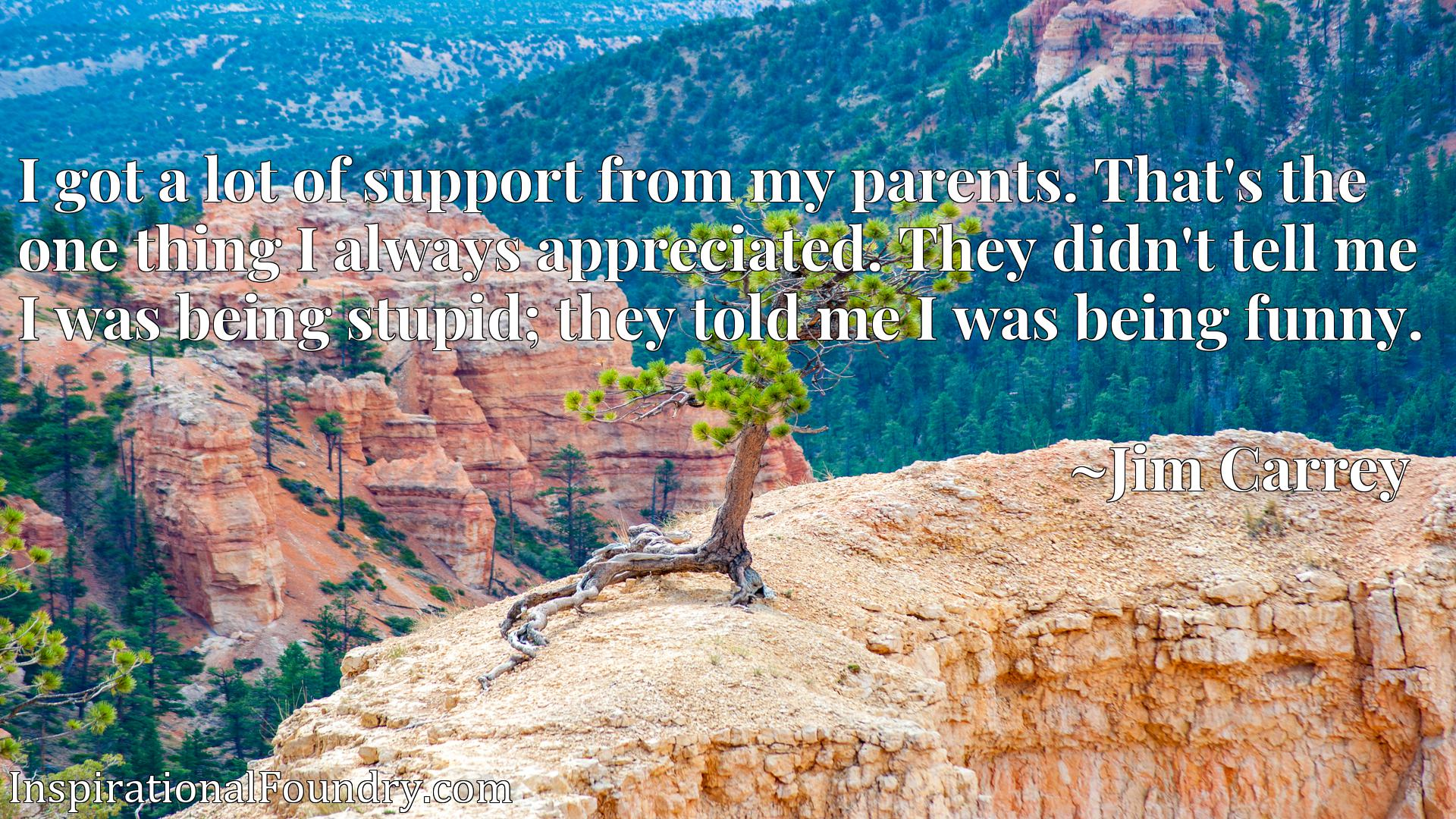 I got a lot of support from my parents. That's the one thing I always appreciated. They didn't tell me I was being stupid; they told me I was being funny.