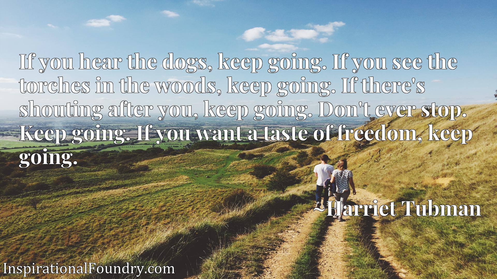If you hear the dogs, keep going. If you see the torches in the woods, keep going. If there's shouting after you, keep going. Don't ever stop. Keep going. If you want a taste of freedom, keep going.