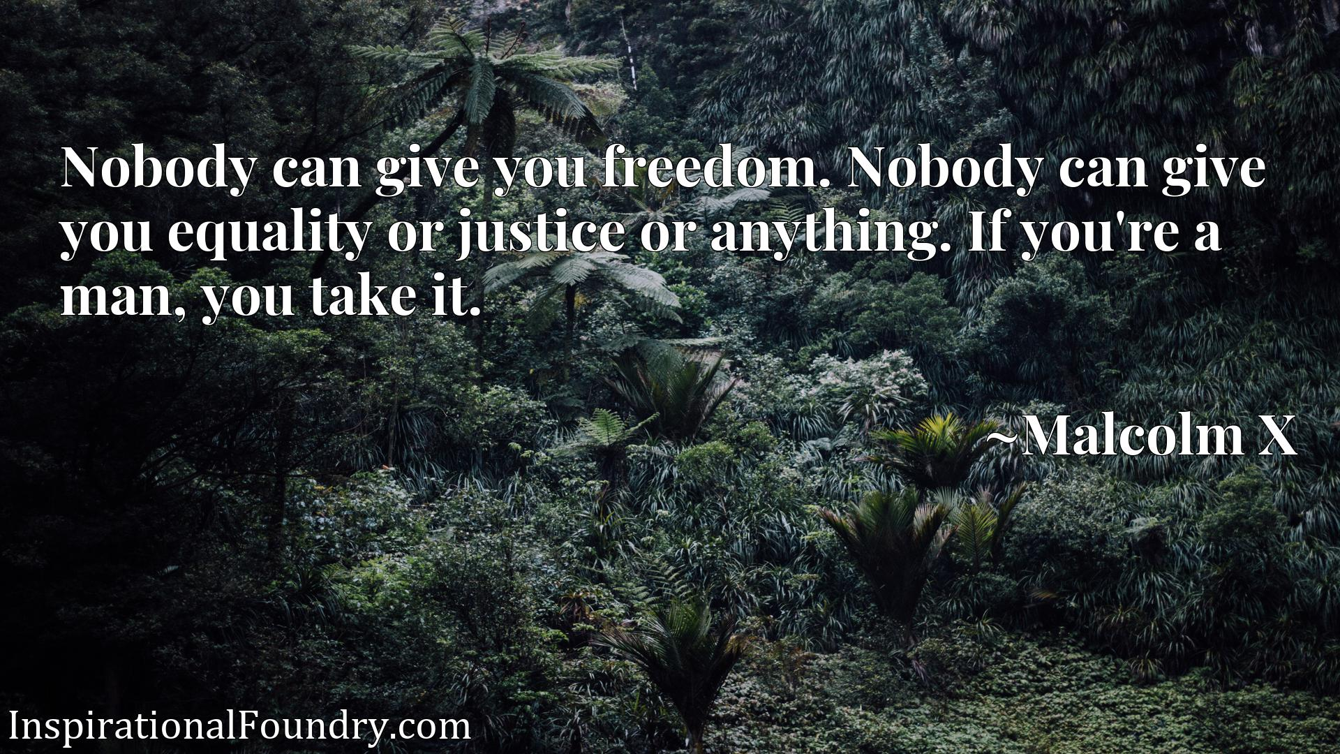 Nobody can give you freedom. Nobody can give you equality or justice or anything. If you're a man, you take it.