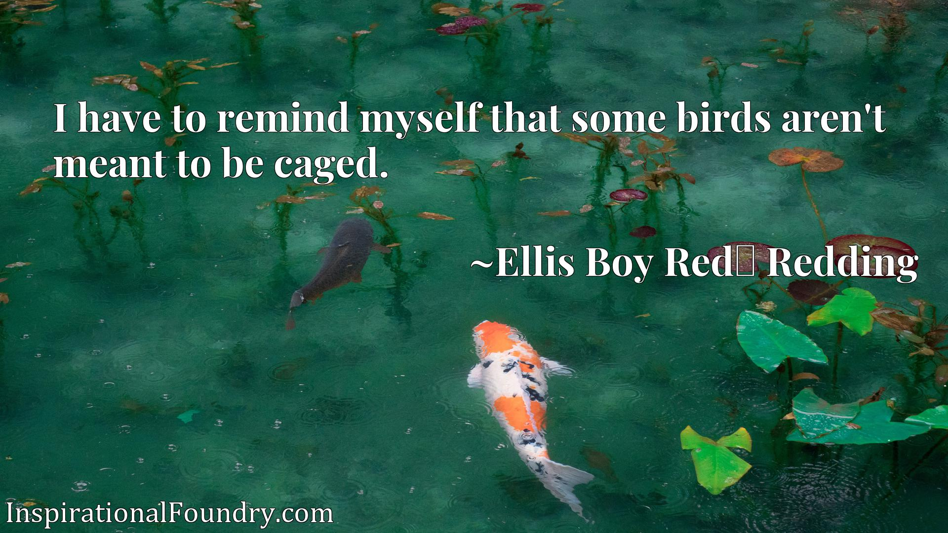 Quote Picture :I have to remind myself that some birds aren't meant to be caged.