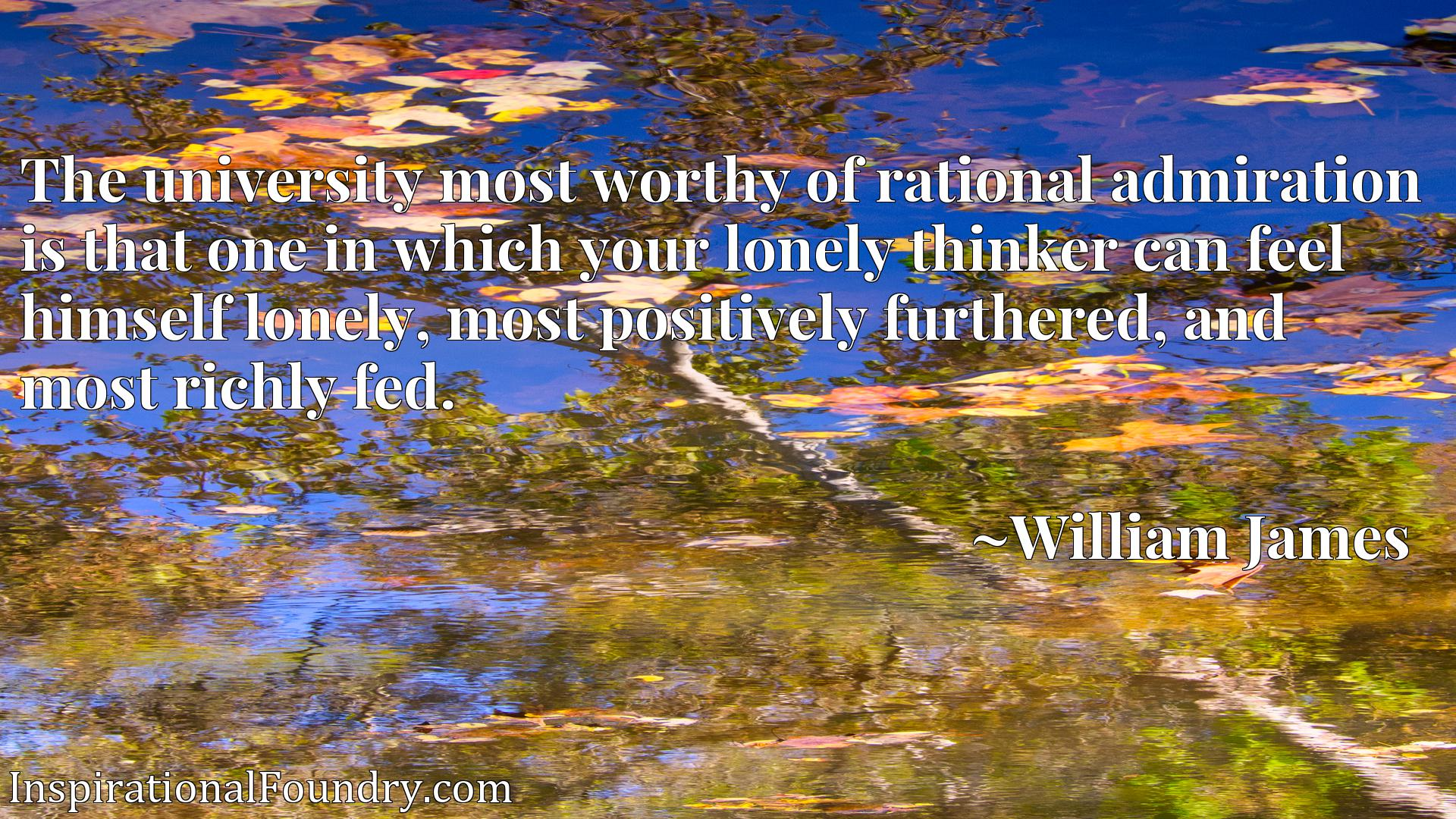 The university most worthy of rational admiration is that one in which your lonely thinker can feel himself lonely, most positively furthered, and most richly fed.