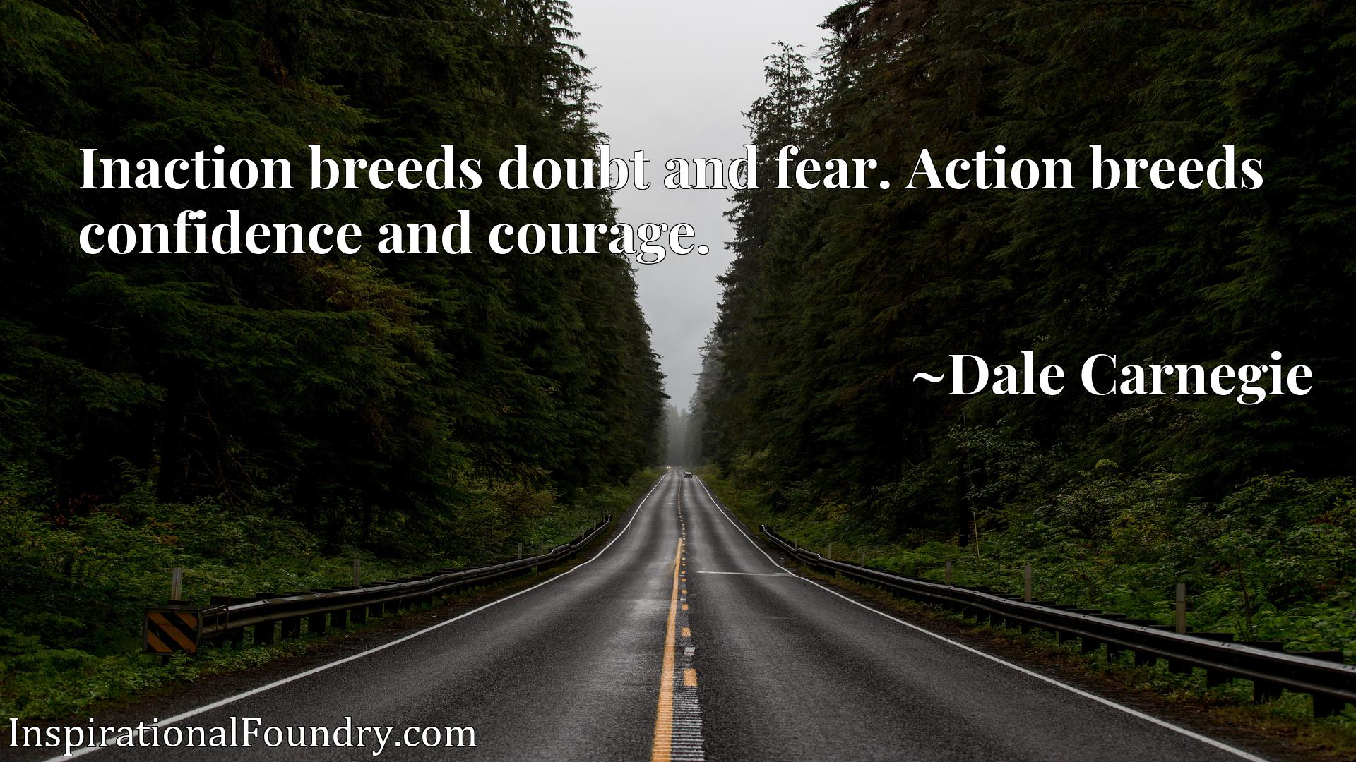 Inaction breeds doubt and fear. Action breeds confidence and courage.