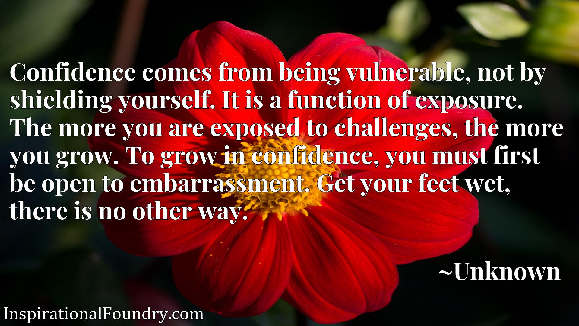 Confidence comes from being vulnerable, not by shielding yourself. It is a function of exposure. The more you are exposed to challenges, the more you grow. To grow in confidence, you must first be open to embarrassment. Get your feet wet, there is no other way.