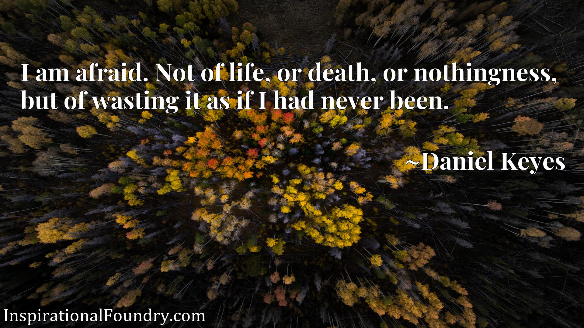 I am afraid. Not of life, or death, or nothingness, but of wasting it as if I had never been.