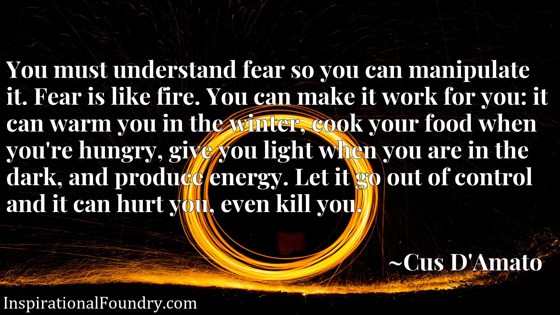 You must understand fear so you can manipulate it. Fear is like fire. You can make it work for you: it can warm you in the winter, cook your food when you're hungry, give you light when you are in the dark, and produce energy. Let it go out of control and it can hurt you, even kill you.