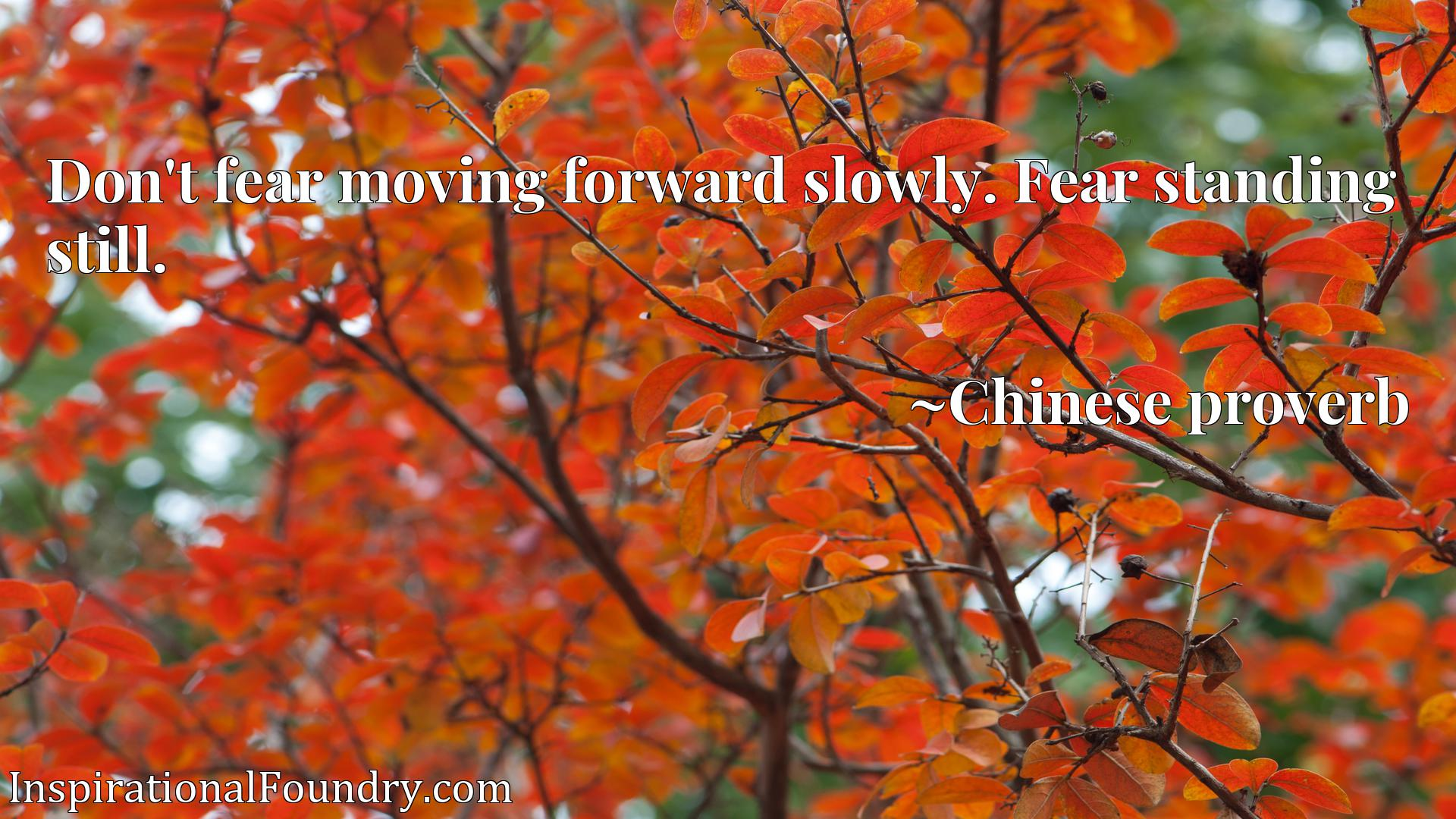 Don't fear moving forward slowly. Fear standing still.