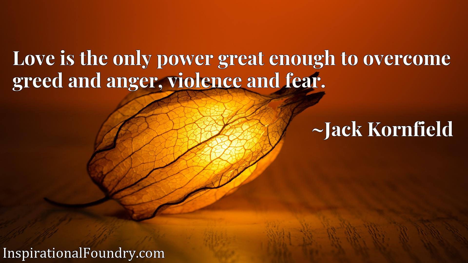 Love is the only power great enough to overcome greed and anger, violence and fear.