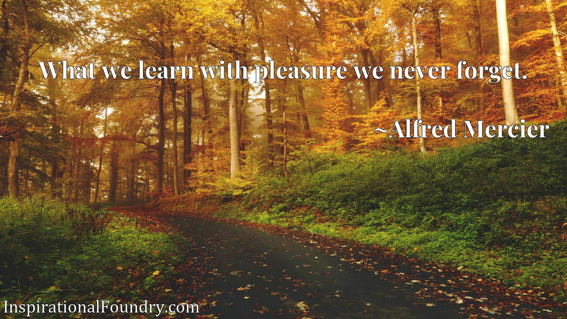 Quote Picture :What we learn with pleasure we never forget.