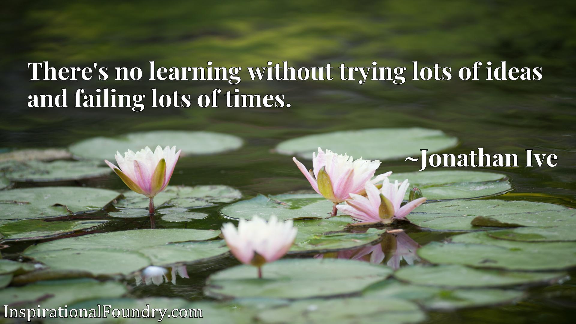 Quote Picture :There's no learning without trying lots of ideas and failing lots of times.