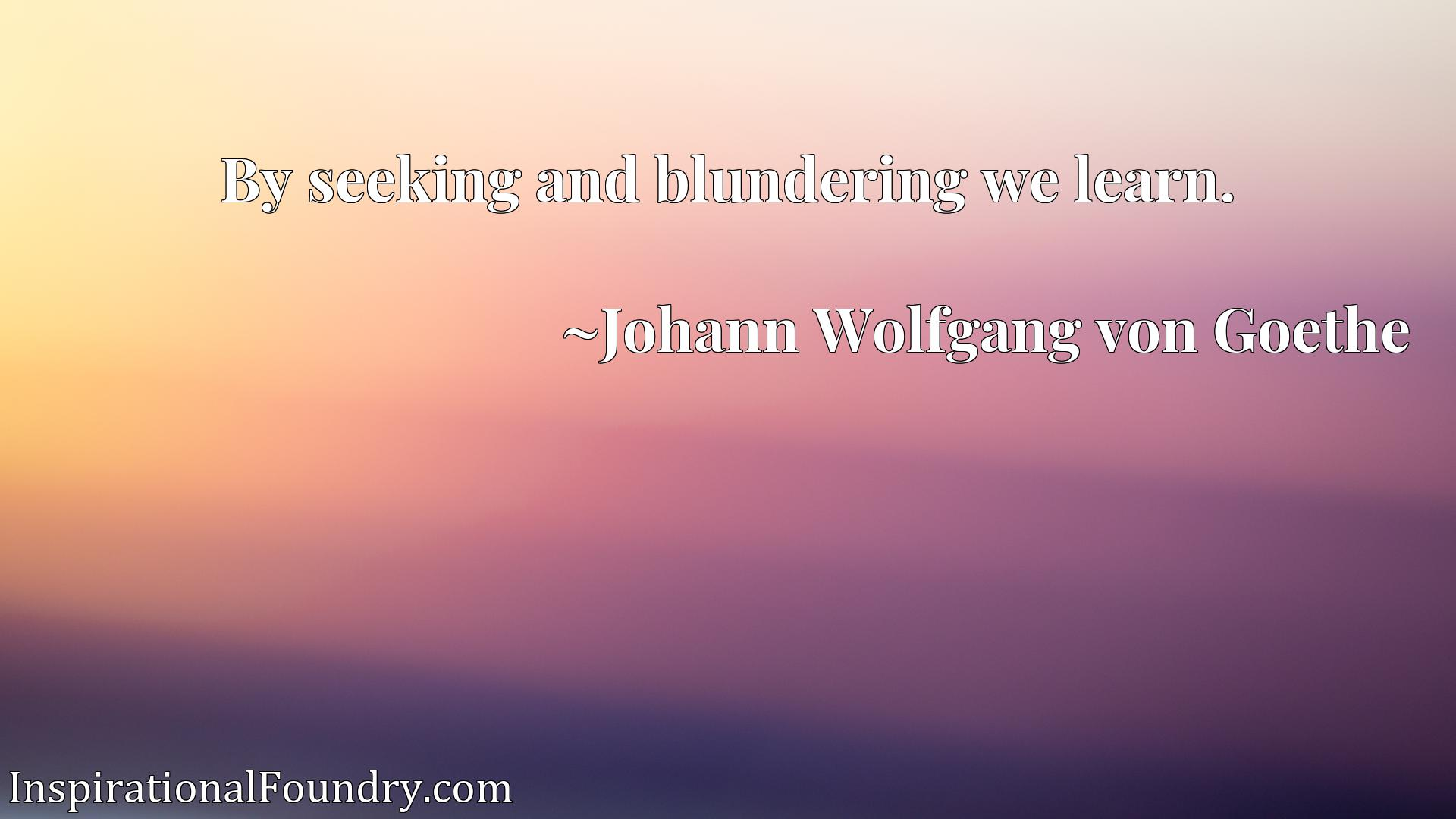 Quote Picture :By seeking and blundering we learn.