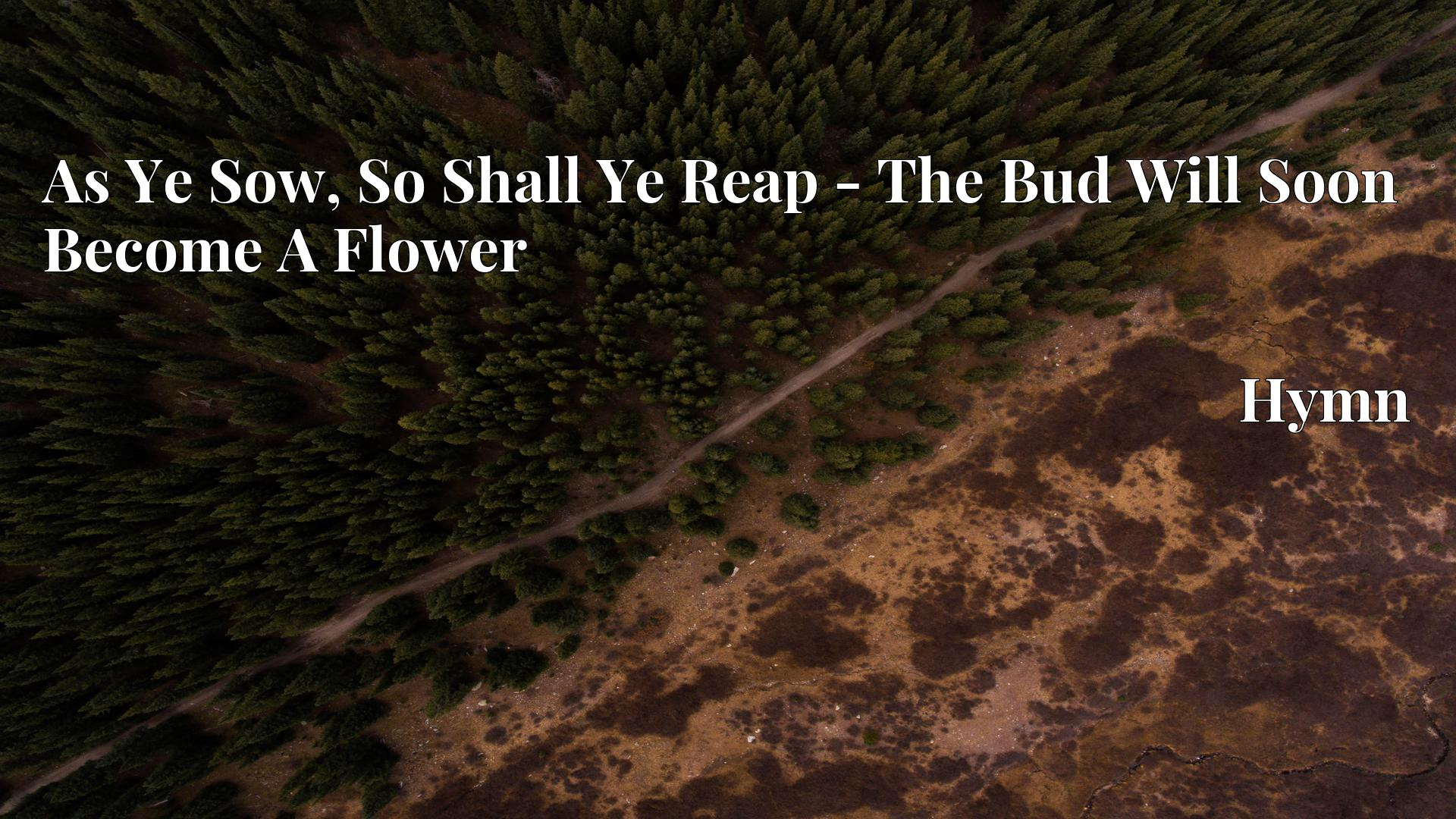 As Ye Sow, So Shall Ye Reap - The Bud Will Soon Become A Flower - Hymn