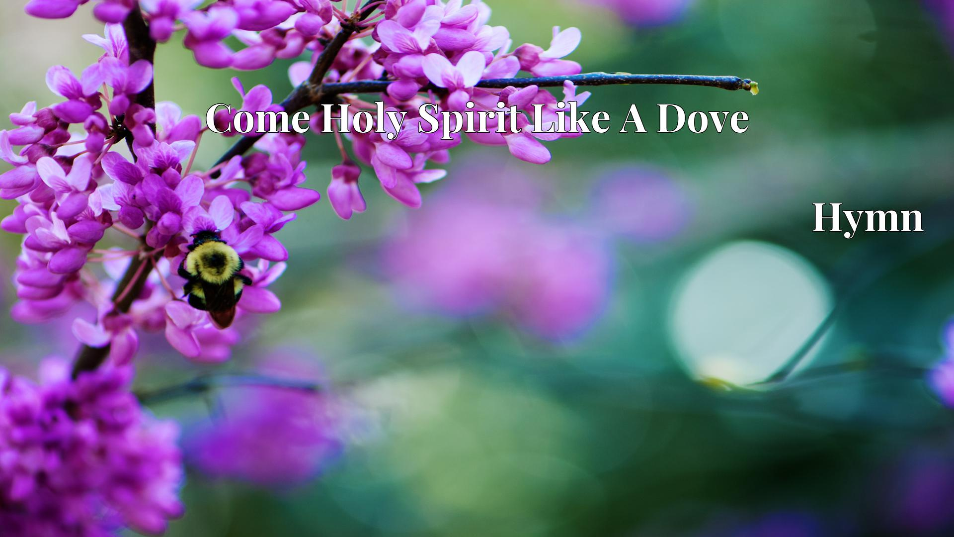 Come Holy Spirit Like A Dove - Hymn