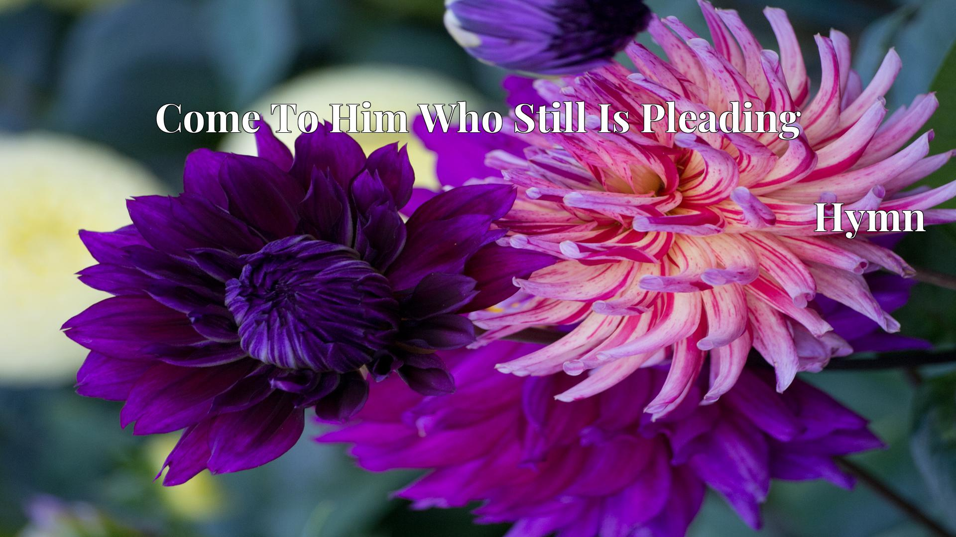 Come To Him Who Still Is Pleading - Hymn
