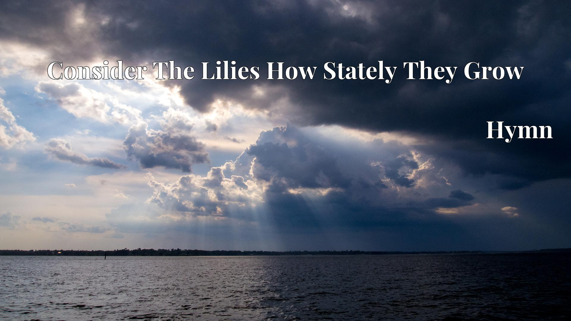 Consider The Lilies How Stately They Grow - Hymn