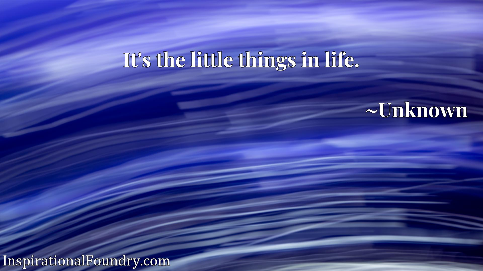 Quote Picture :It's the little things in life.
