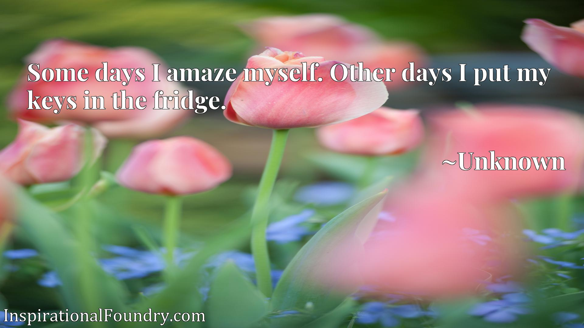 Quote Picture :Some days I amaze myself. Other days I put my keys in the fridge.