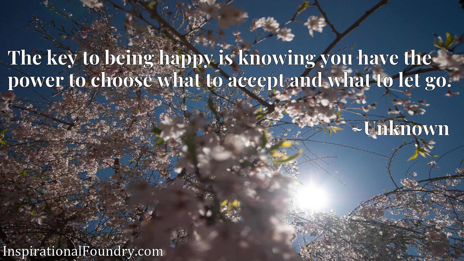 Quote Picture :The key to being happy is knowing you have the power to choose what to accept and what to let go.