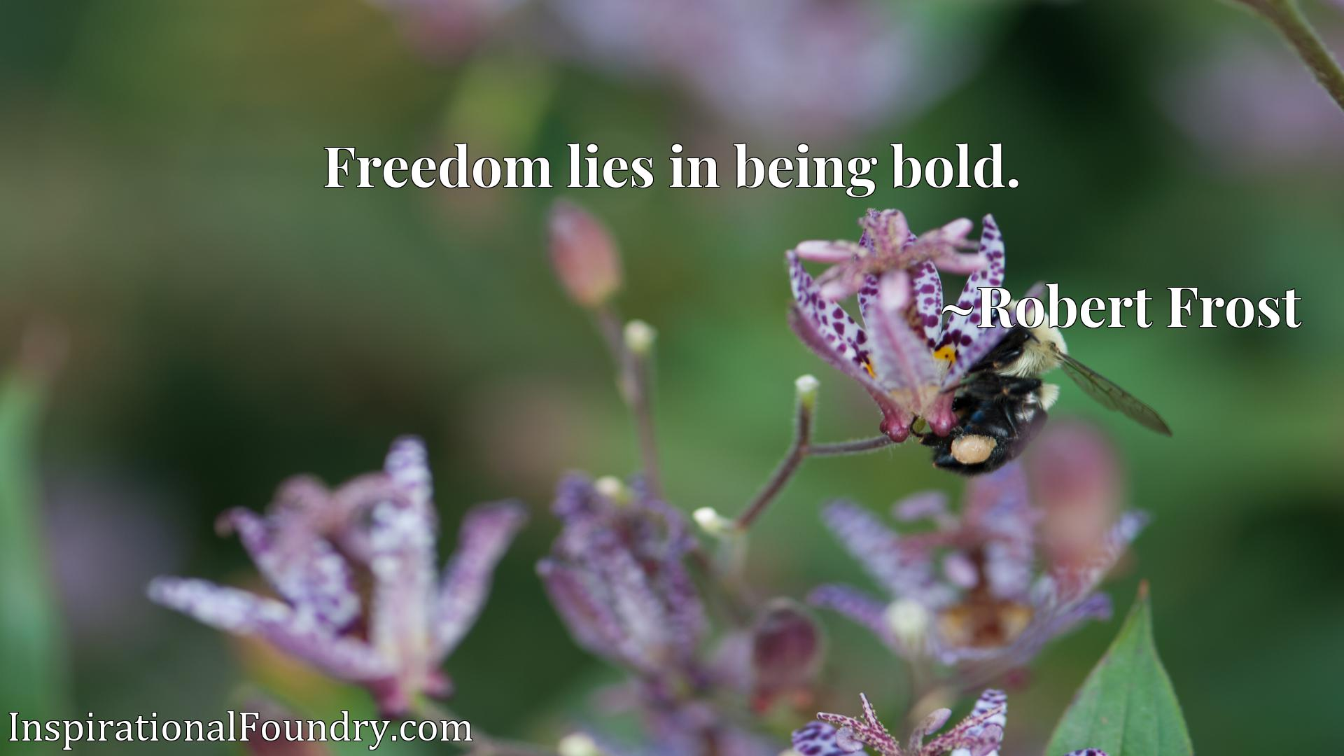 Quote Picture :Freedom lies in being bold.