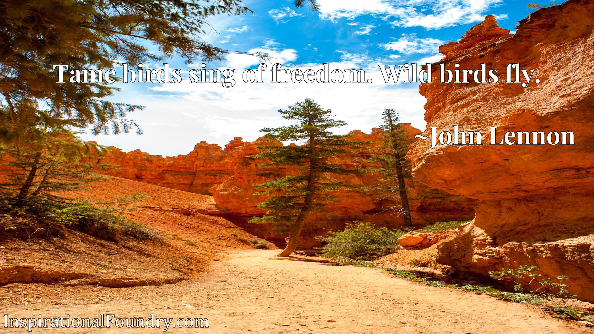 Quote Picture :Tame birds sing of freedom. Wild birds fly.