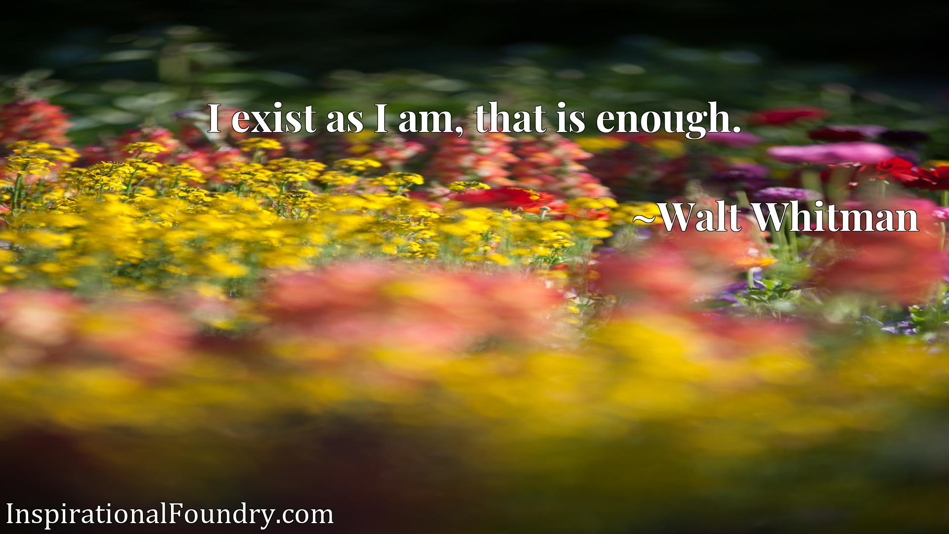 Quote Picture :I exist as I am, that is enough.