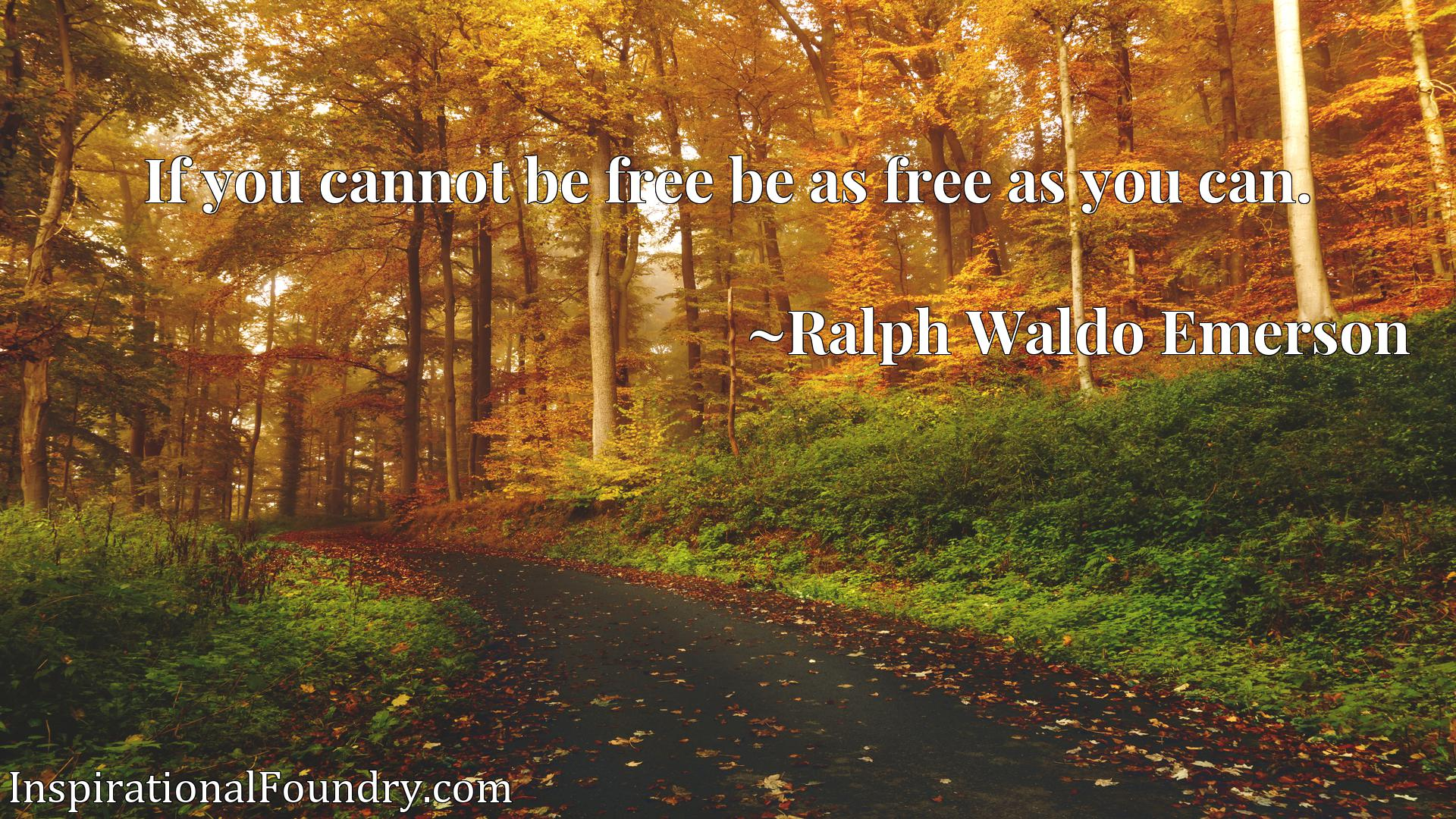 Quote Picture :If you cannot be free be as free as you can.