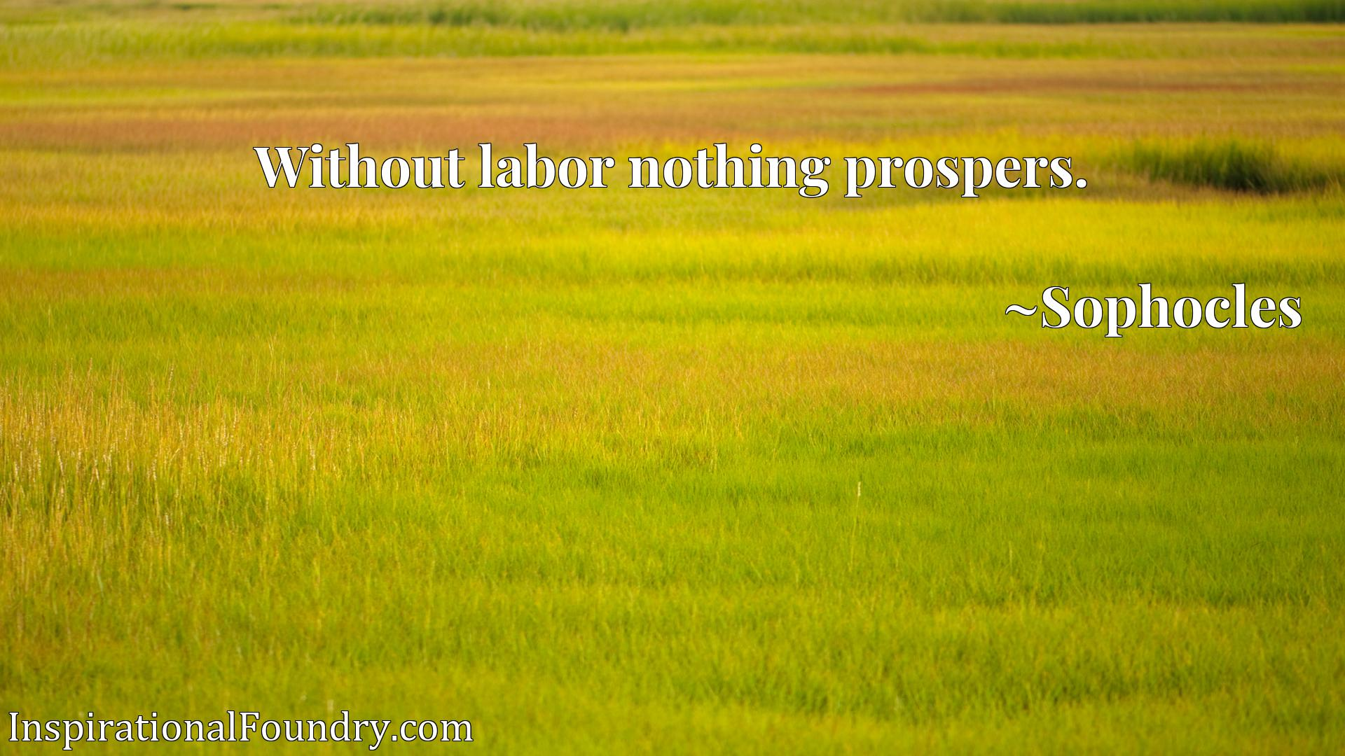 Quote Picture :Without labor nothing prospers.