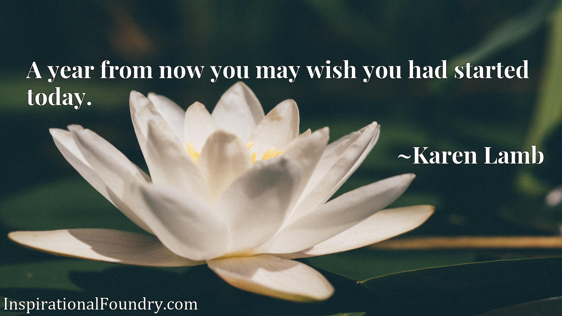 Quote Picture :A year from now you may wish you had started today.