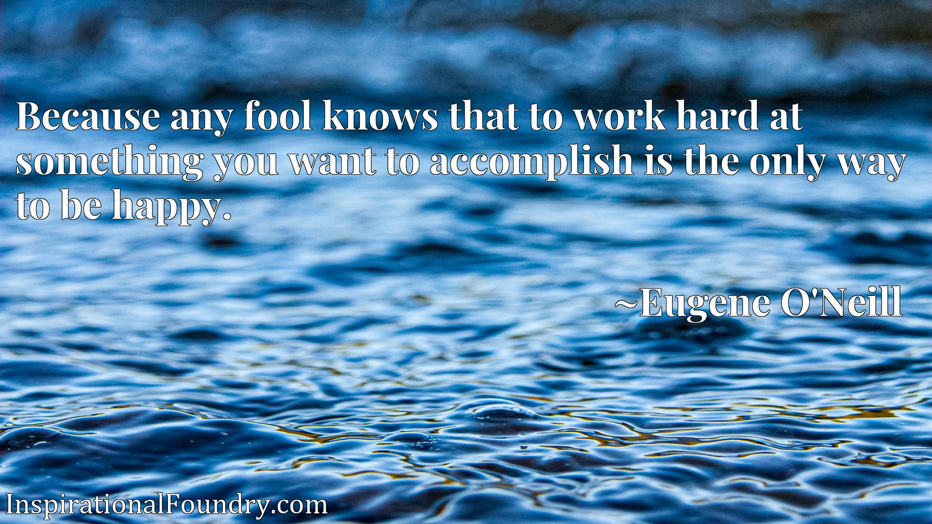 Quote Picture :Because any fool knows that to work hard at something you want to accomplish is the only way to be happy.