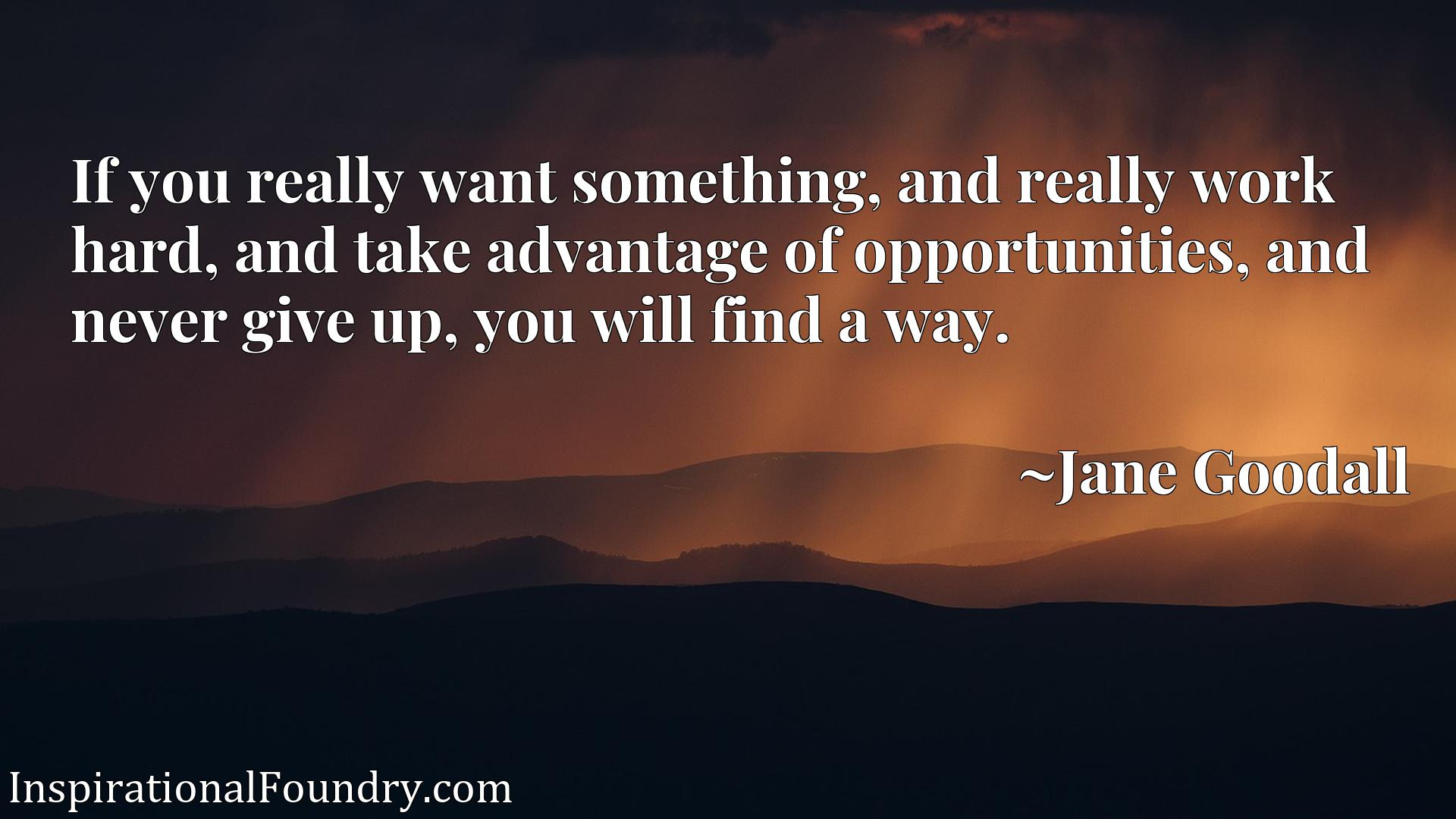 If you really want something, and really work hard, and take advantage of opportunities, and never give up, you will find a way.