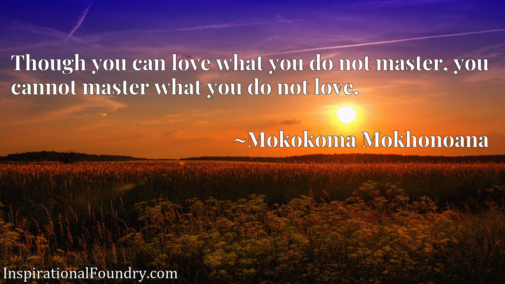 Though you can love what you do not master, you cannot master what you do not love.