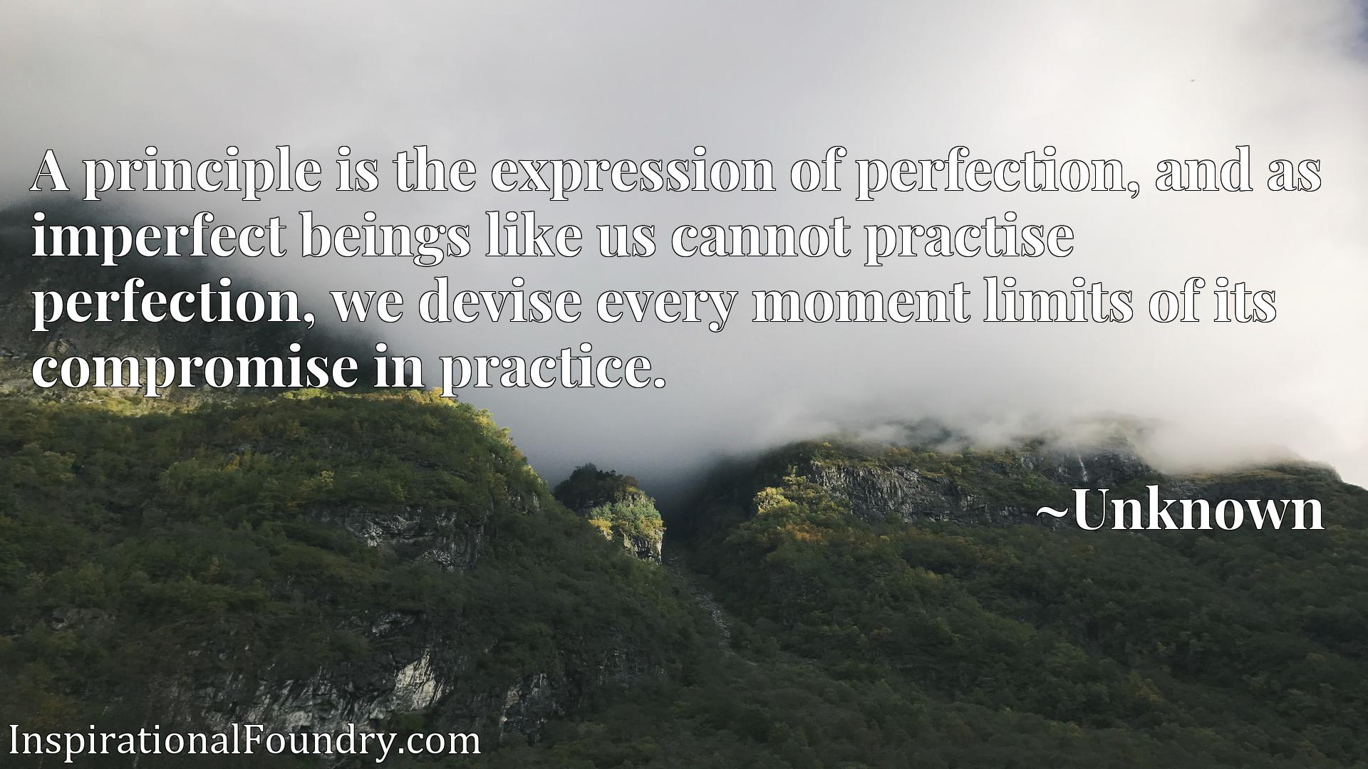 A principle is the expression of perfection, and as imperfect beings like us cannot practise perfection, we devise every moment limits of its compromise in practice.