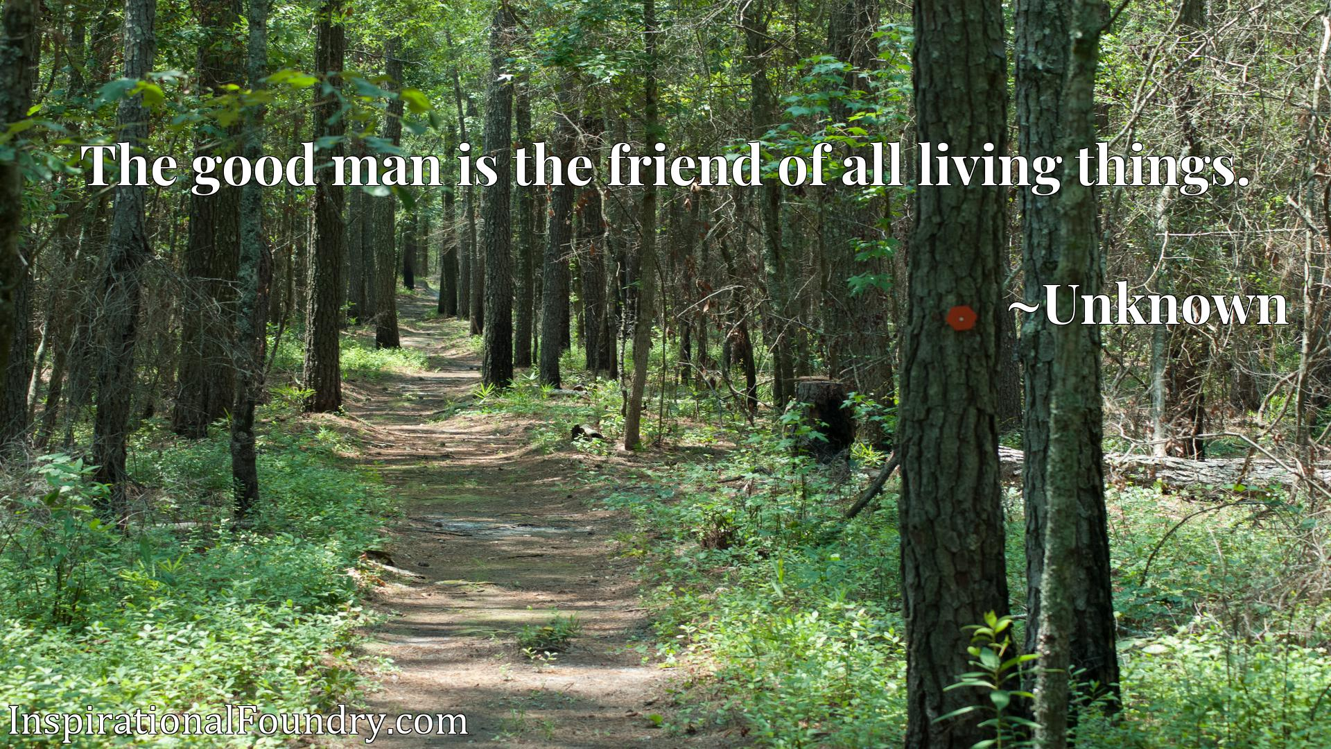 Quote Picture :The good man is the friend of all living things.