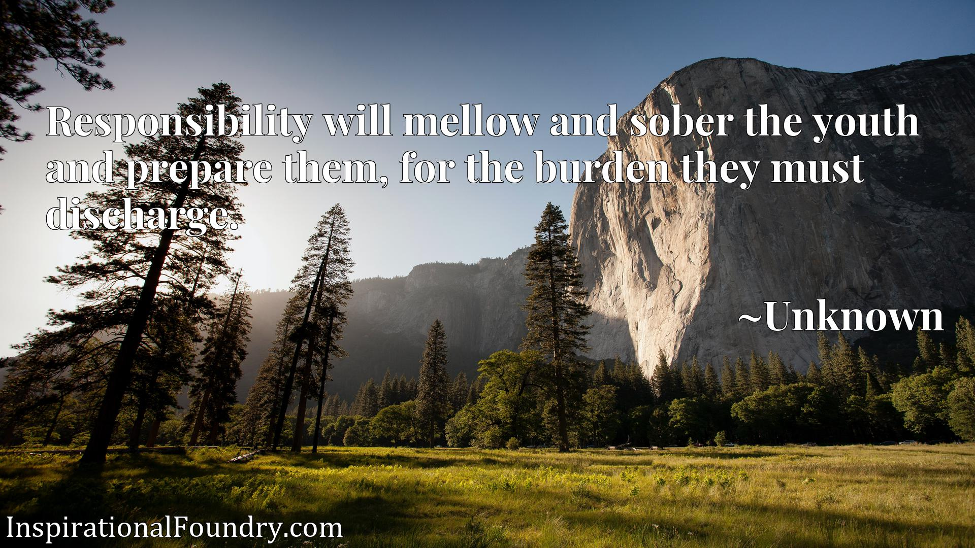 Quote Picture :Responsibility will mellow and sober the youth and prepare them, for the burden they must discharge.
