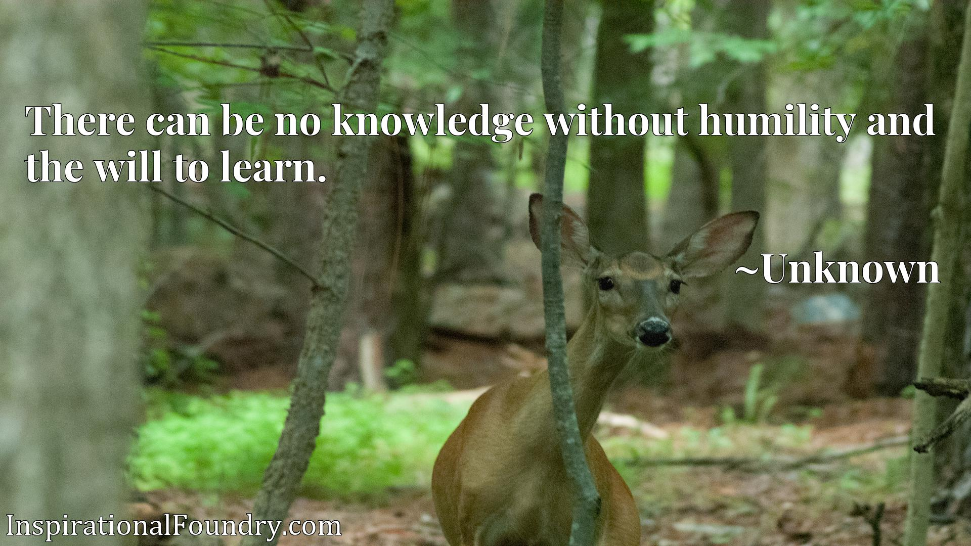 Quote Picture :There can be no knowledge without humility and the will to learn.