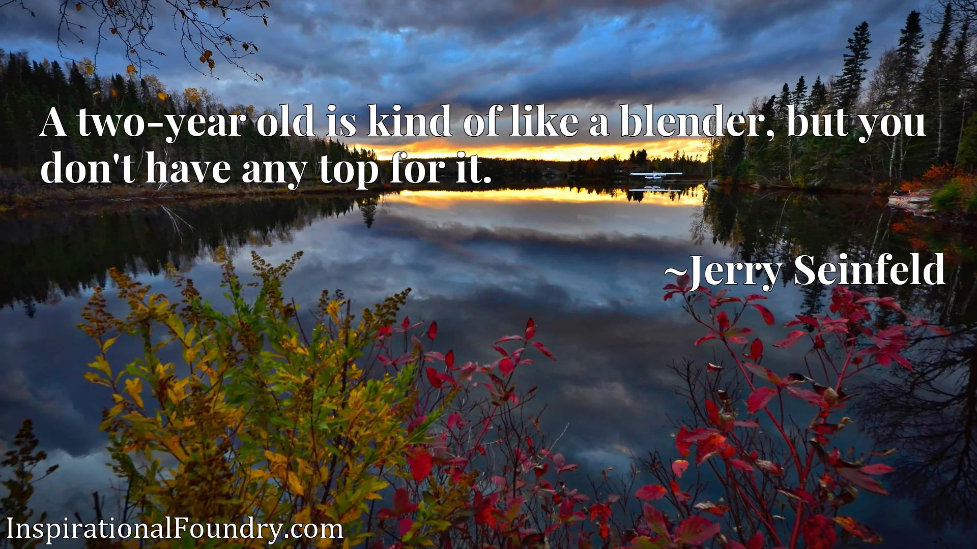 A two-year old is kind of like a blender, but you don't have any top for it.