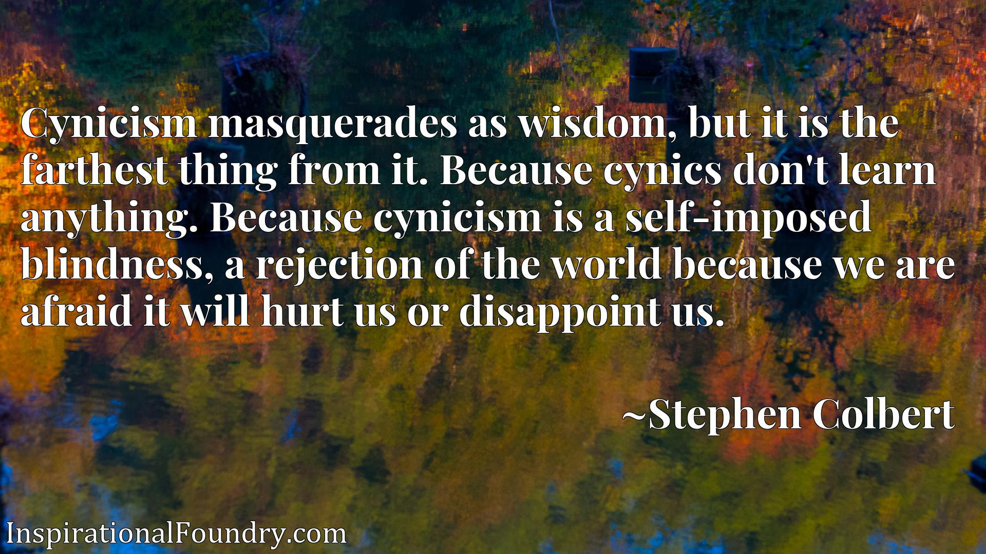 Cynicism masquerades as wisdom, but it is the farthest thing from it. Because cynics don't learn anything. Because cynicism is a self-imposed blindness, a rejection of the world because we are afraid it will hurt us or disappoint us.