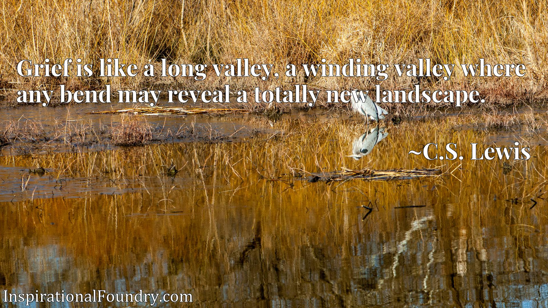 Grief is like a long valley, a winding valley where any bend may reveal a totally new landscape.