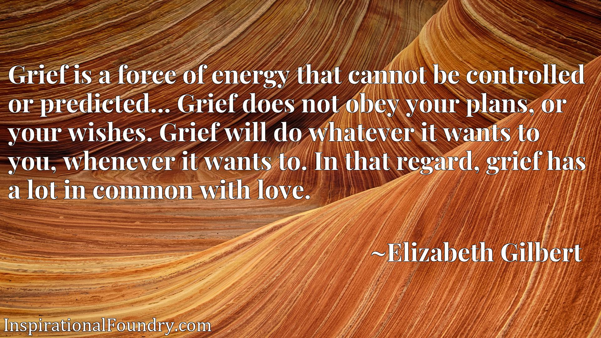 Grief is a force of energy that cannot be controlled or predicted... Grief does not obey your plans, or your wishes. Grief will do whatever it wants to you, whenever it wants to. In that regard, grief has a lot in common with love.
