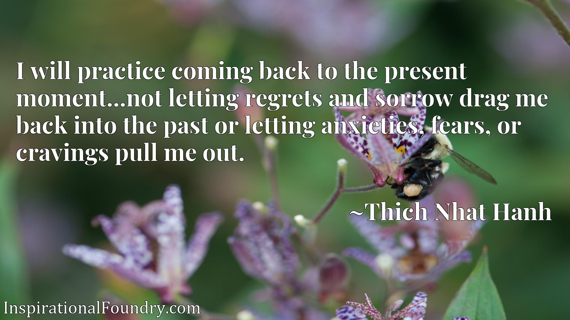 I will practice coming back to the present moment...not letting regrets and sorrow drag me back into the past or letting anxieties, fears, or cravings pull me out.