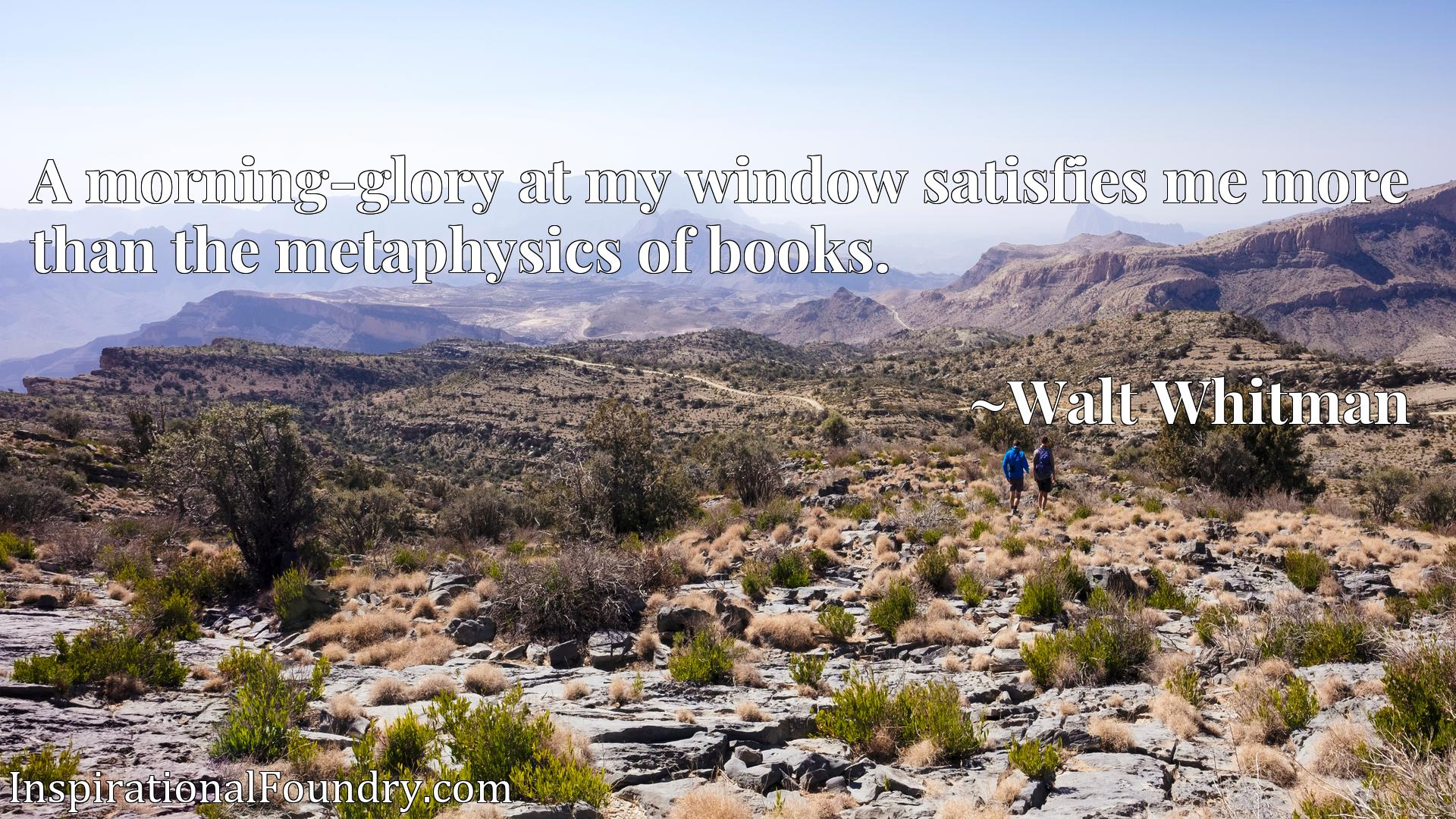 Quote Picture :A morning-glory at my window satisfies me more than the metaphysics of books.