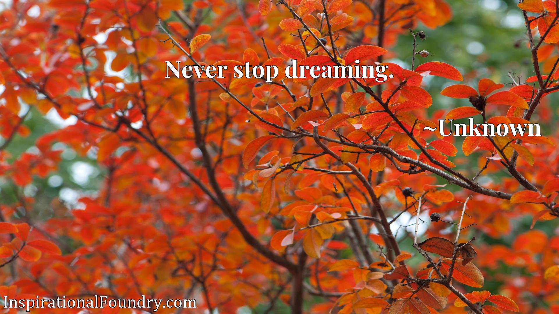 Quote Picture :Never stop dreaming.
