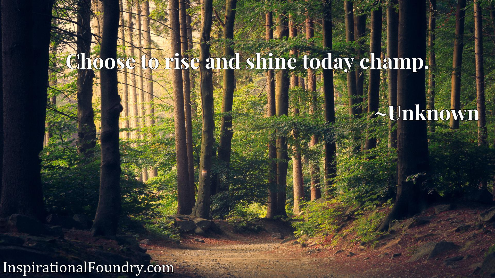 Quote Picture :Choose to rise and shine today champ.