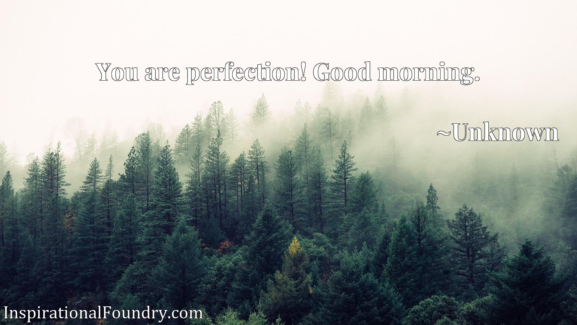 Quote Picture :You are perfection! Good morning.